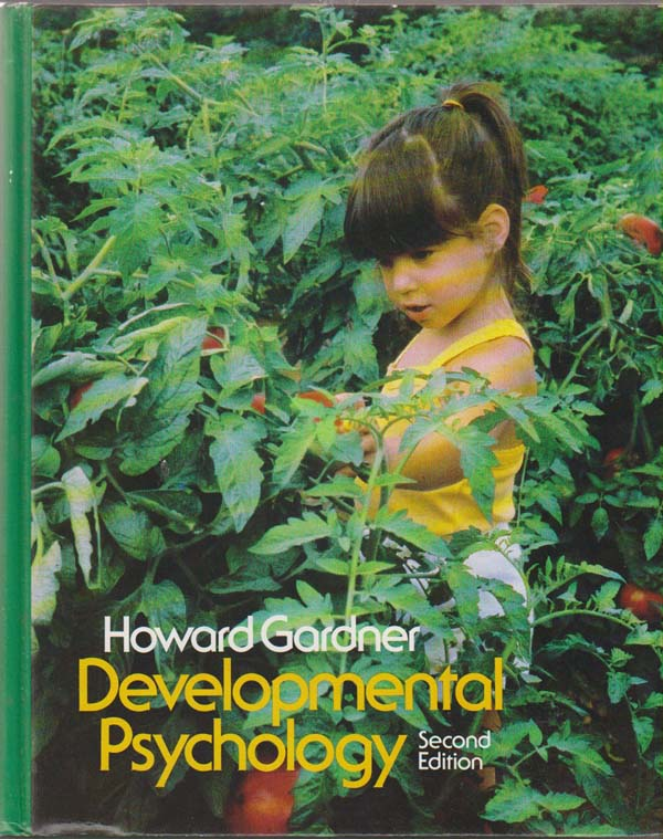 Image for Developmental Psychology An Introduction